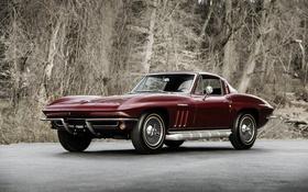 Обои Corvette, Chevrolet, шевроле, 1965, Stingray, корветт