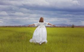 Обои поле, лето, платье, девочка