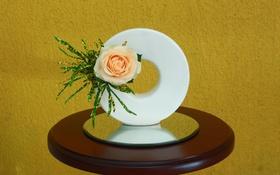 Обои роза, бутон, композиция, икебана