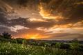 Картинка небо, облака, закат, поля, луга, Хорватия