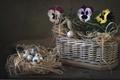 Картинка корзина, яйца, виола