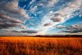 Картинка облака, небо, поле