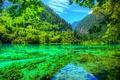Картинка лес, лето, небо, деревья, горы, озеро