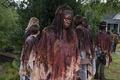 Картинка группа, Danai Gurira, The Walking Dead, Michonne, Ходячие мертвецы
