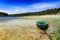 Картинка лес, деревья, озеро, камыши, лодка, Польша, солнечно