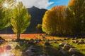 Картинка поле, небо, деревья, природа, камни