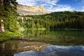Картинка лес, горы, озеро, отражение, Канада