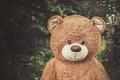 Картинка улыбка, игрушка, медведь