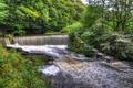 Картинка деревья, парк, ручей, Англия, водопад, HDR, Yarrow valley park