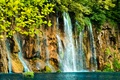 Картинка ветки, скала, озеро, водопад, кусты