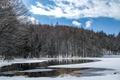 Картинка зима, лес, снег, деревья, река, Япония