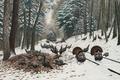 Картинка зима, лес, снег, пейзаж, птицы, рисунок, рельсы