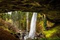 Картинка лес, деревья, скала, ручей, камни, водопад, США