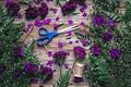 Картинка листья, лепестки, нитки, папоротник, ножницы, гвоздики, барвинок
