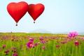 Картинка цветы, воздушные шары, В форме сердца