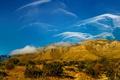 Картинка облака, деревья, пейзаж, горы, США, Техас, Guadalupe Mountains National Park