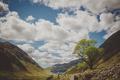 Картинка зелень, небо, облака, деревья, природа, холмы, влюбленные