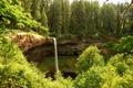 Картинка зелень, лес, деревья, парк, обрыв, водопад, США