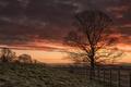 Картинка закат, природа, забор