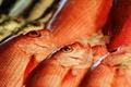 Картинка макро, фон, рыба