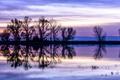 Картинка небо, облака, деревья, закат, отражение, река, вечер