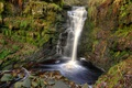 Картинка лес, скала, камни, Англия, водопад, мох, Lead Mines Clough Waterfall