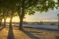 Картинка деревья, закат, парк, Франция, аллея, Монпелье, Эро