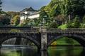 Картинка деревья, река, Япония, Токио, фонари, мосты, кусты