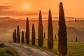 Картинка Italy, Tuscany, Val d'Orcia