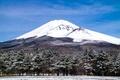 Картинка деревья, пейзаж, гора, вулкан, Япония, Fuji