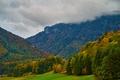 Картинка поле, осень, лес, трава, облака, деревья, горы