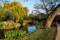 Картинка трава, деревья, пруд, парк, Англия, Лондон, дорожка