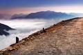 Картинка дорога, облака, горы, туман, Италия, Ломбардия, Альпе-ди-Ленно