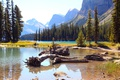 Картинка лес, деревья, горы, озеро, камни, скалы, Alberta