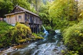 Картинка лес, деревья, ручей, водопад, мельница, Вашингтон, США