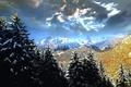Картинка зима, лес, снег, деревья, пейзаж, горы, Италия