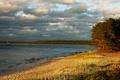 Картинка тучи, деревья, берег, песок, Lohusalu, лес, Эстония