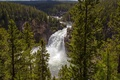 Картинка лес, деревья, мост, река, камни, скалы, водопад