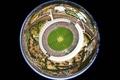 Картинка Австралия, стадион, крикет, Мельбурн