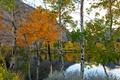 Картинка осень, деревья, горы, озеро, березы