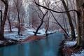 Картинка зима, деревья, река