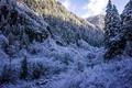 Картинка зима, лес, снег, деревья, горы, ущелье