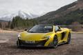 Картинка McLaren, суперкар, макларен, Spider, 675LT