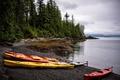 Картинка деревья, побережье, лодки, Аляска, США, Alaska, Ketchikan