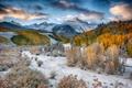 Картинка осень, лес, снег, деревья, горы, долина