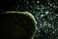 Картинка капли, яблоко, зеленое, photographer, Hannes Hochsmann