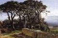 Картинка деревья, пейзаж, картина, Карлос де Хаэс, Пинии