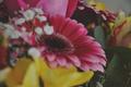 Картинка цветы, букет, герберы