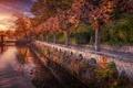 Картинка осень, деревья, озеро, Швейцария, набережная