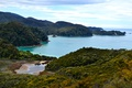 Картинка море, побережье, Австралия, Tasman National Park